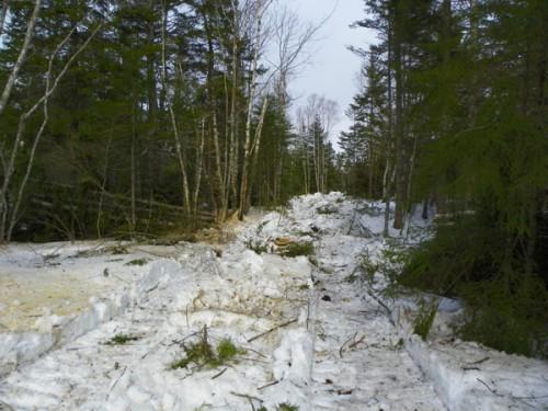 skid road