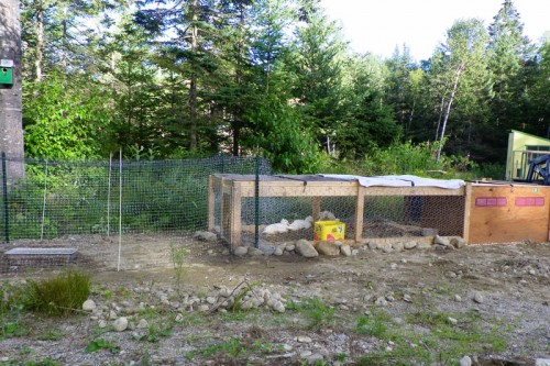 Repurposed Chicken House