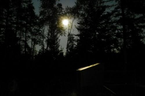 full moon over the chicken coop