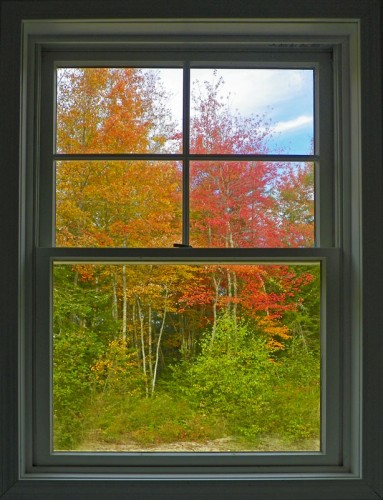 autumn colors from the window